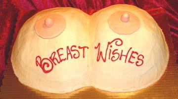 erotic breast wish
