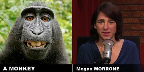 Comparison between Megan and a monkey.